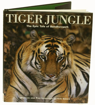 tiger jungle the epic tale of bandhavgarh iain green. Black Bedroom Furniture Sets. Home Design Ideas