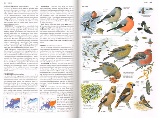 collins bird guide the most complete guide to the birds of britain rh andrewisles com collins bird guide apk collins bird guide 2nd edition