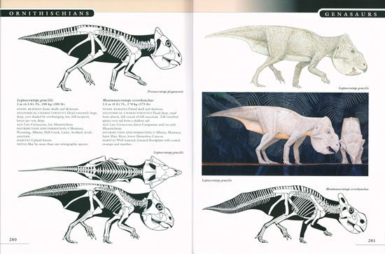 the princeton field guide to dinosaurs gregory s paul rh andrewisles com the princeton field guide to dinosaurs pdf download the princeton field guide to dinosaurs gregory s. paul