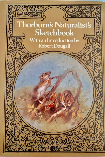 Thorburn's Naturalist's sketchbook. Robert Dougall.
