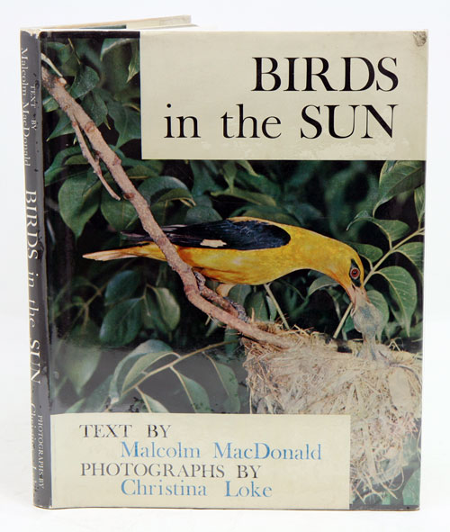 Birds in the sun. Malcolm MacDonald, Christina Loke.