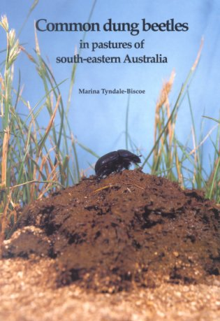Common dung beetles in pastures of south-eastern Australia. Marina Tyndale-Biscoe.