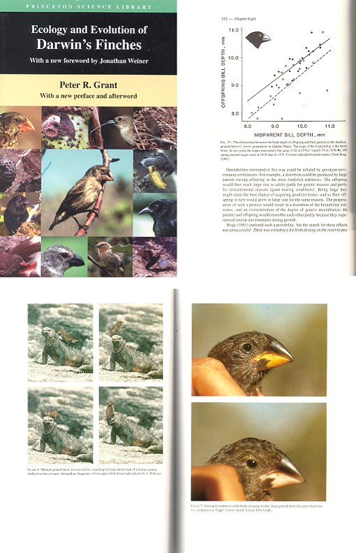 Ecology and evolution of Darwin's finches. Peter R. Grant.