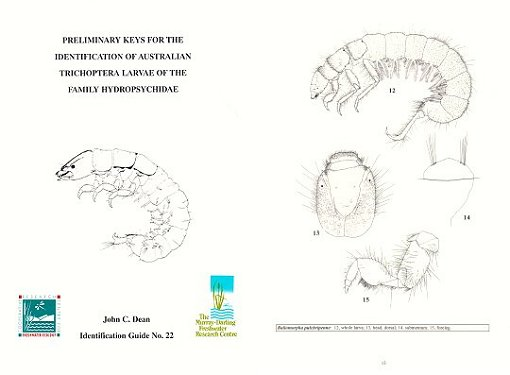 Preliminary keys for the identification of Australian Trichoptera larvae of the family Hydropsychidae. John Dean.