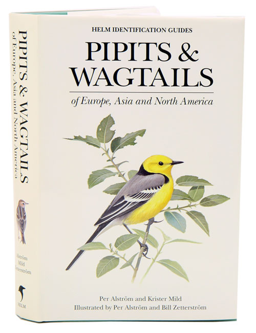 Pipits and wagtails of Europe, Asia and North America. Per Alstrom.