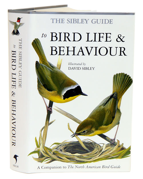 The Sibley guide to bird life and behaviour. David Sibley.