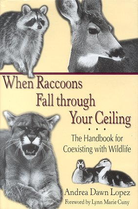 When raccoons fall through your ceiling: the handbook for coexisting with wildlife. Andrea Dawn Lopez.