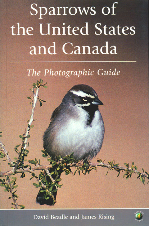 Sparrows of the United States and Canada: the photographic guide. David Beadle, James Rising.