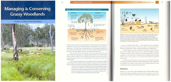 Managing and conserving grassy woodlands. S. McIntyre.