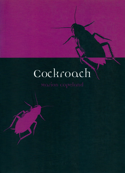Cockroach. Marion Copeland.
