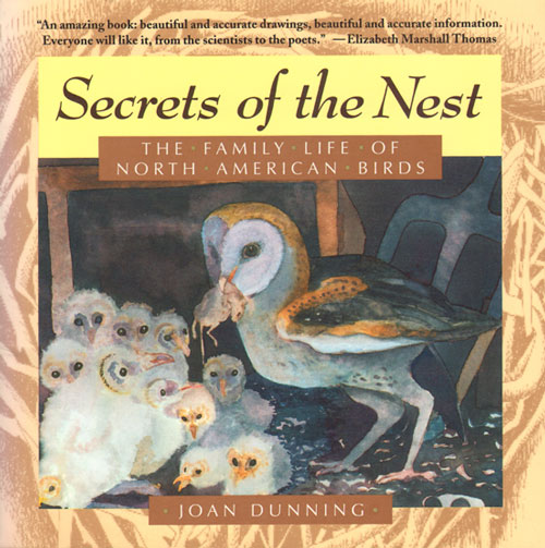 Secrets of the nest: The family life of North American birds. Joan Dunning.