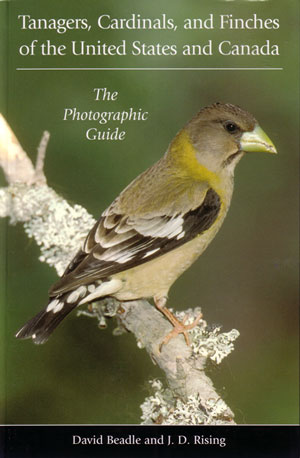 Tanagers, Cardinals, and Finches of the United States and Canada: the photographic guide. David Beadle, J D. Rising.