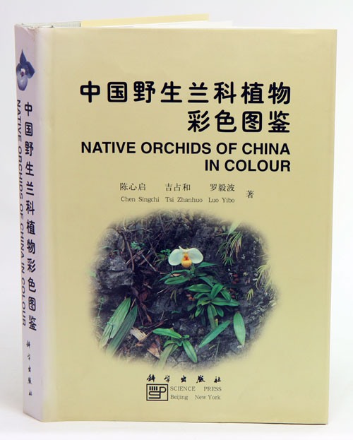 Native orchids of China in colour. Chen Singehi.