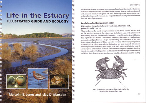 Life in the estuary: illustrated guide and ecology. Malcom B. Jones, Islay D. Marsden.