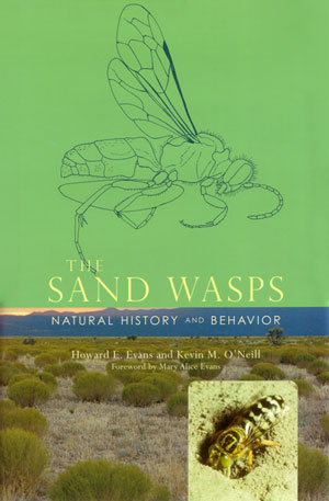 The Sand wasps: natural history and behavior. Howard E. Evans, Kevin M. O'Neill.