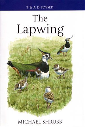 The Lapwing. Michael Shrubb.