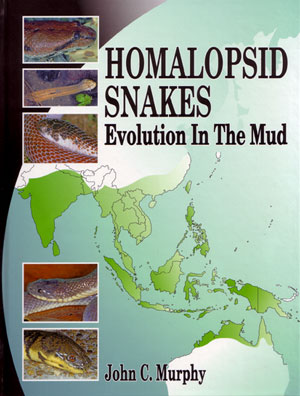 Homalopsid snakes: evolution in the mud. John Murphy.