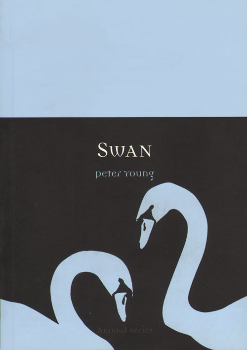 Swan. Peter Young.