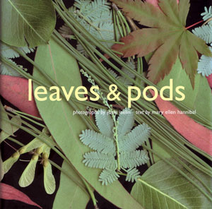 Leaves and pods. Mary Ellen Hannibal.