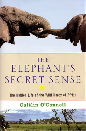 The elephant's secret sense: the hidden life of the wild herds of Africa. Caitlin O'Connell.