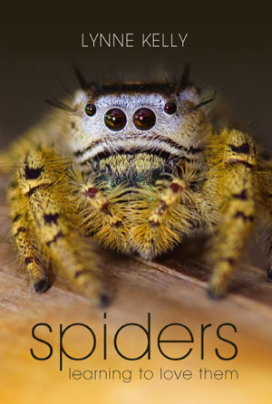 Spiders: learning to love them. Lynne Kelly.