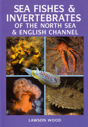 Sea fishes and invertebrates of the North Sea and English Channel. Lawson Wood.