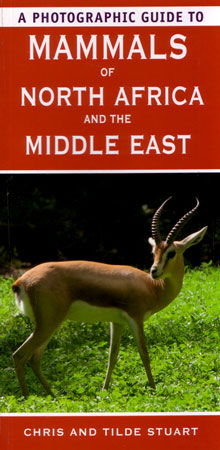 A photographic guide to mammals of North Africa and the Middle East. Chris amd Tilde Stuart Stuart.