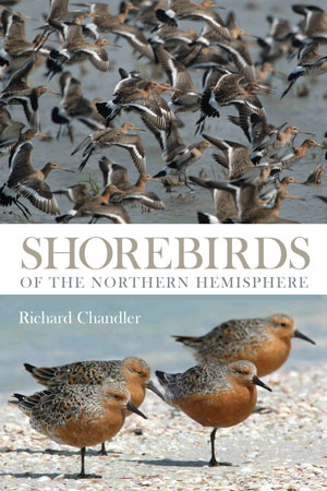 Shorebirds of the Northern Hemisphere. Richard Chandler.