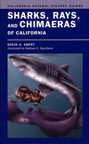 Sharks, Rays and Chimaeras of California. David A. Ebert.