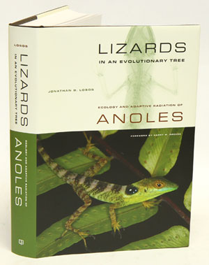Lizards in an evolutionary tree: ecology and adaptive radiation. Jonathan B. Losos.