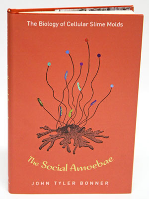 The social amoebae: the biology of cellular Slime molds. John Tyler Bonner.
