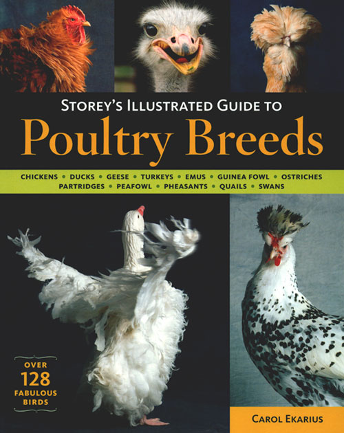 Storey's illustrated guide to poultry breeds. Carol Ekarius.