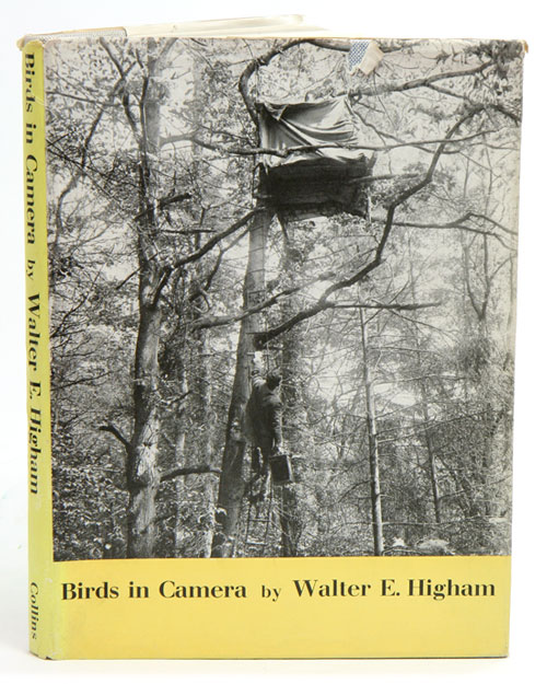 Birds in camera: twenty-five years of bird photography. Walter E. Higham.