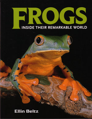 Frogs: inside their remarkable world. Ellin Beltz.
