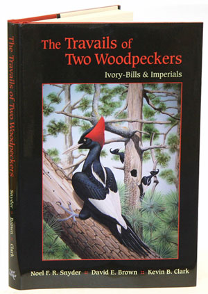 Travails of two Woodpeckers: Ivory-bills and Imperials. Noel F. R. Snyder.
