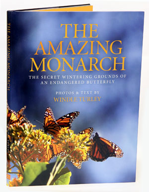 The amazing Monarch: the secret wintering grounds of an endangered butterfly. Windle Turley.
