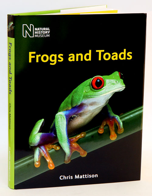 Frogs and toads. Chris Mattison.