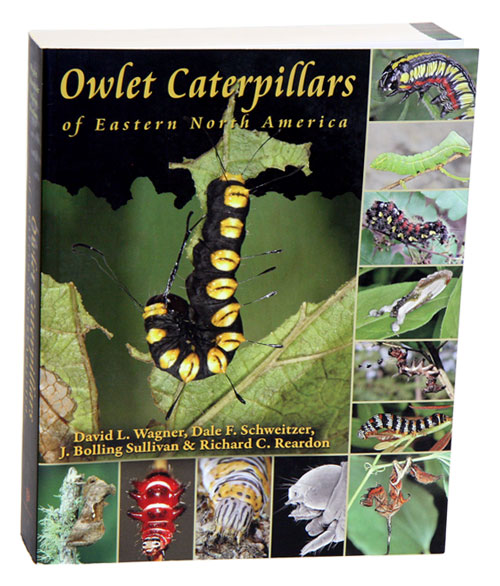 The owlet caterpillars of eastern North America. David L. Wagner.