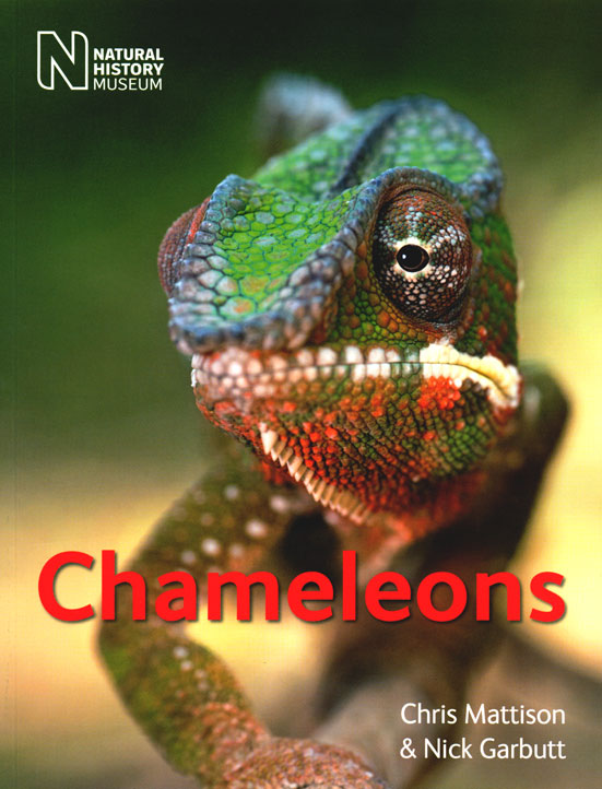 Chameleons. Chris Mattison, Nick Garbutt.