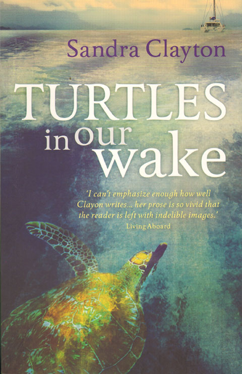 Turtles in our wake. Sandra Clayton.
