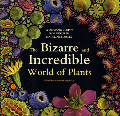 Bizarre and incredible world of plants. Wolfgang Stuppy, Rob Kesseler, Madeline Harley.