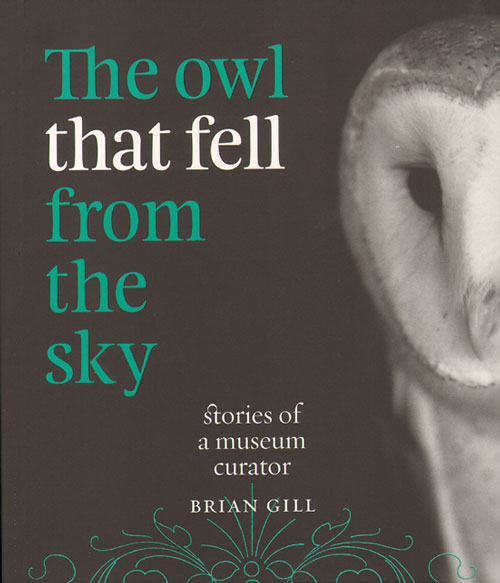 The owl that fell from the sky: stories of a museum curator. Brian Gill.