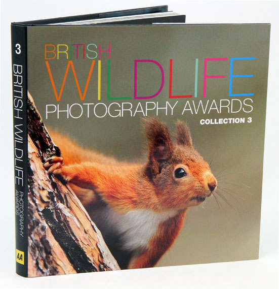 British Wildlife Photography Awards: collection three. Donna Wood.