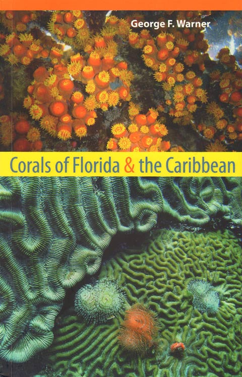 Corals of Florida and the Caribbean. George F. Warner.