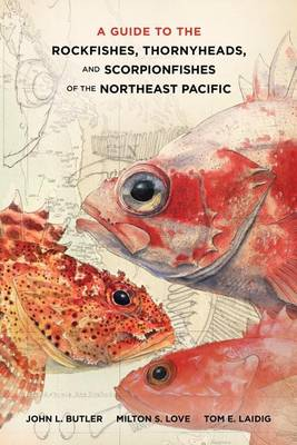 Guide to the rockfishes, thornyheads, and scorpionfishes of the northeast Pacific. John L. Butler.