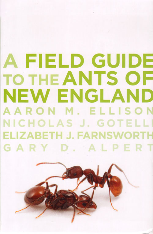 Field guide to the ants of New England. Aaron M. Ellison.