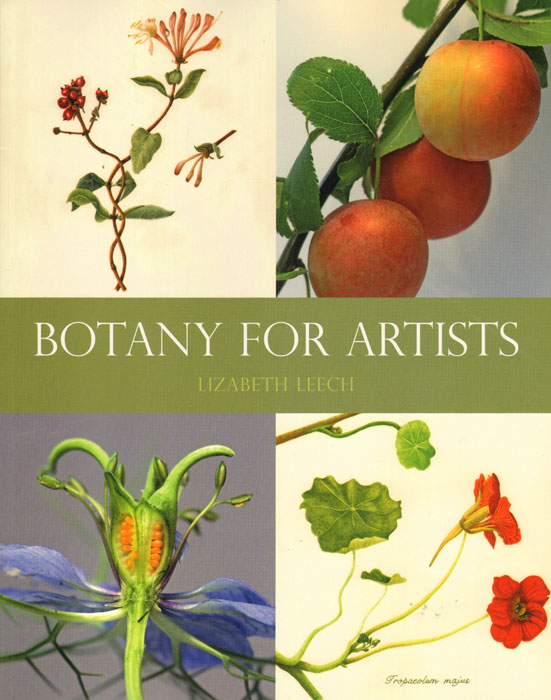 Botany for artists. Lizabeth Leech.