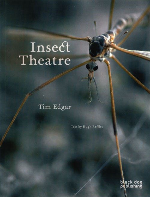 Insect theatre. Tim Edgar, Hugh Raffles.