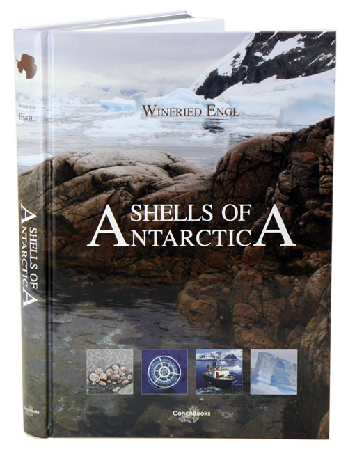 Shells of Antarctica. Winfried Engl.