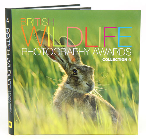 British Wildlife Photography Awards: collection four. Donna Wood.